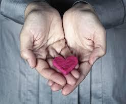 Cardiol – inhaltsstoffe – Bewertung – erfahrungen