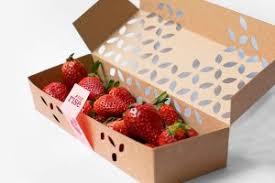 Home Berry Box - anwendung - Unterricht - Tabletten