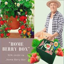 Home Berry Box - hausgemachte Erdbeeren - Amazon - preis - bestellen