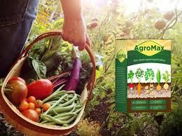 Agromax – den Körper reinigen - preis – in apotheke – anwendung