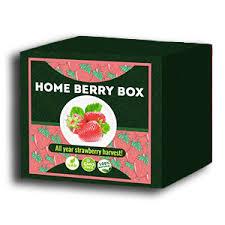 Home Berry Box - Bewertung - Kommentatoren - Inhaltsstoffe