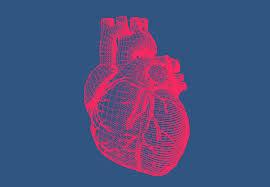 Cardio NRJ – Aktion - anwendung – inhaltsstoffe