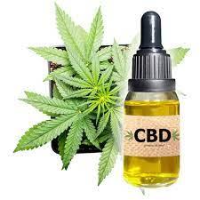 Cannabis Oil - bestellen - bei Amazon - preis - forum