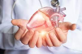 Heart Tonic - bestellen - bei Amazon - preis - forum